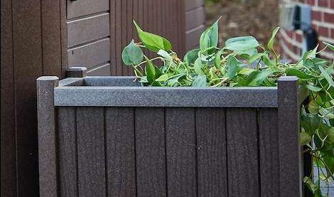 Planter on Customization Page