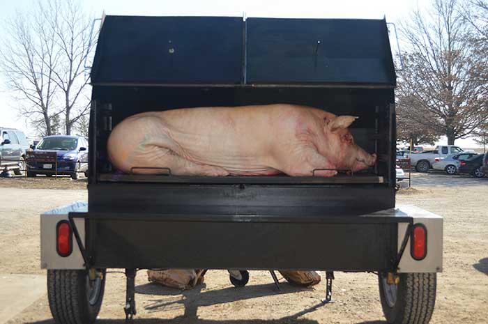 The Pitboss Whole Hog