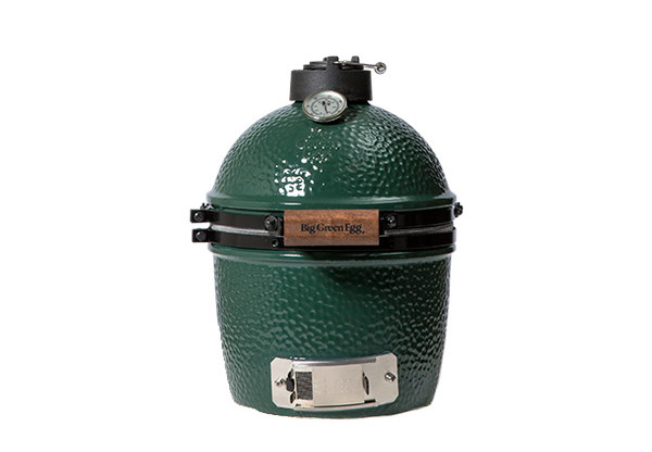 Big Green Egg Grill Mini Photo 2