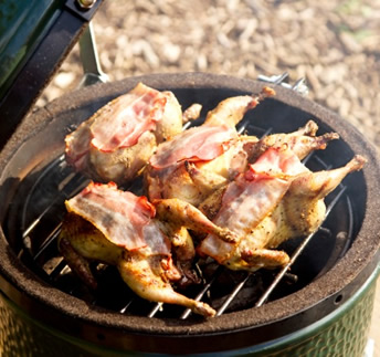 Big Green Egg Mini3 Grilling Poultry